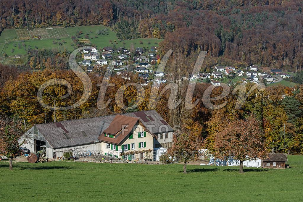 Hofgut Luftmatt, Ziefen (BL) | Der Hofgut Luftmatt ist der südlichste gelegene Hof von Ziefen im Kanton Baselland.