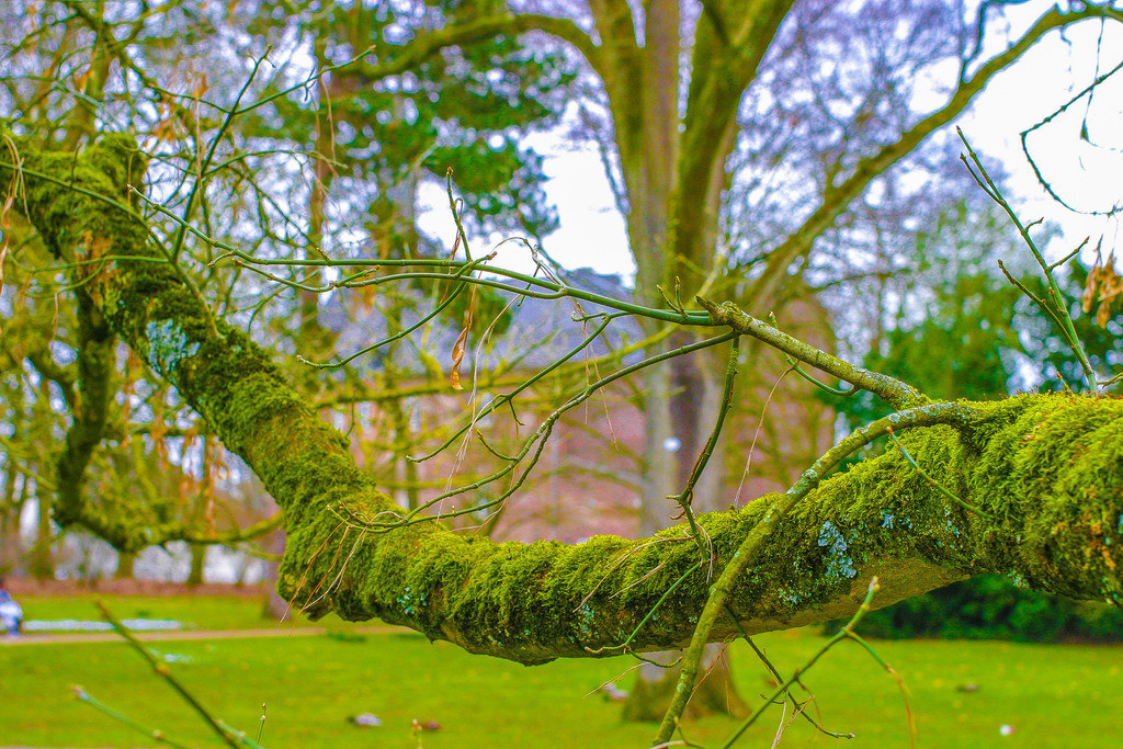 Schlosspark_Moers0221_12