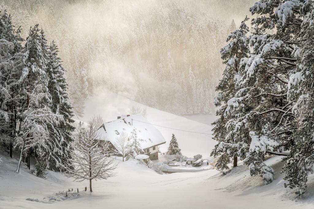 Schwarzwaldwinter | Typische Winterlandschaft im Schwarzwald bei Kirnbach
