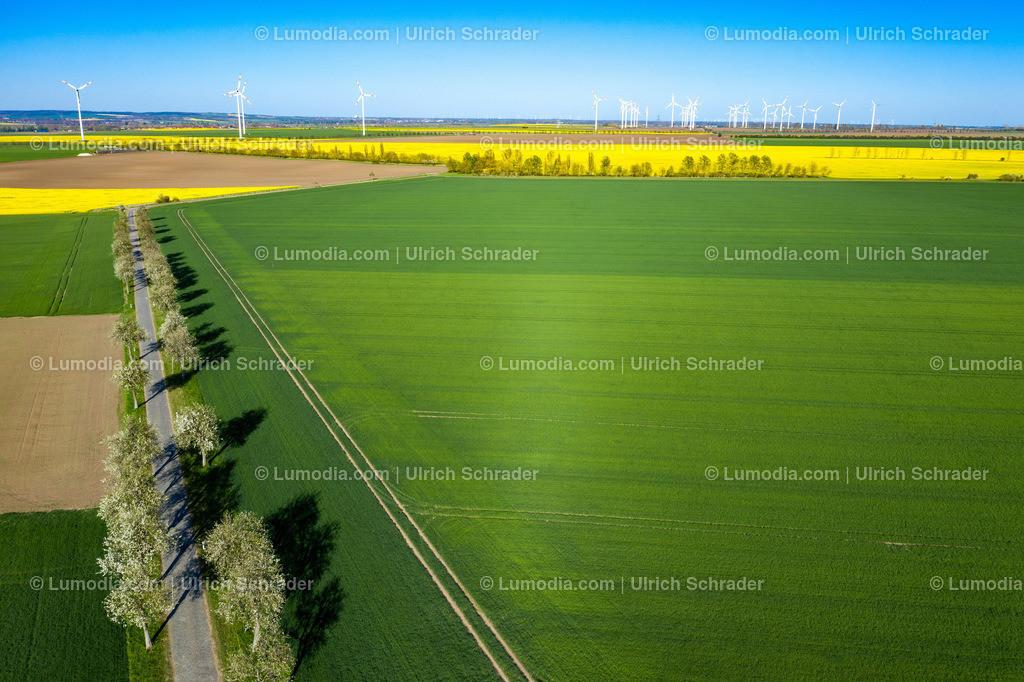 10049-50932 - Landschaft bei Eilenstedt