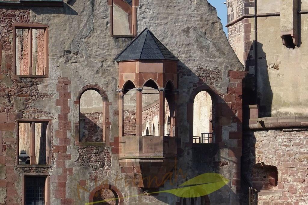 Heidelberger Schloss Ausschnitt