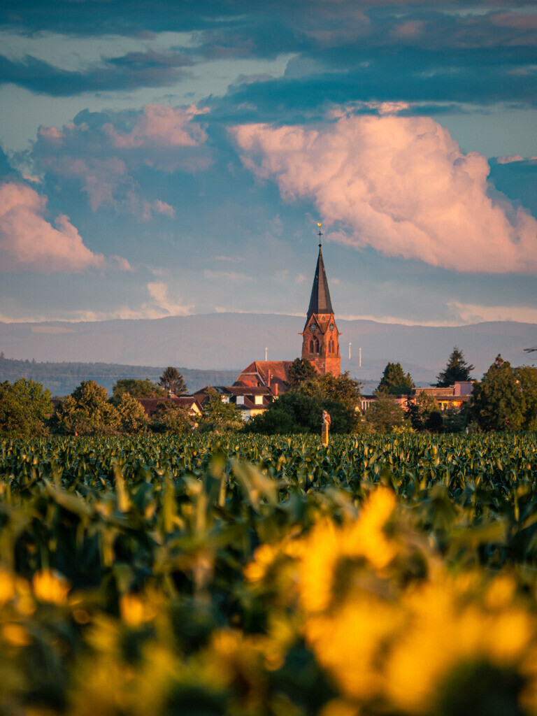 Schwanau-Nonnenweier | Die Kirche in Schwanau-Nonnenweier