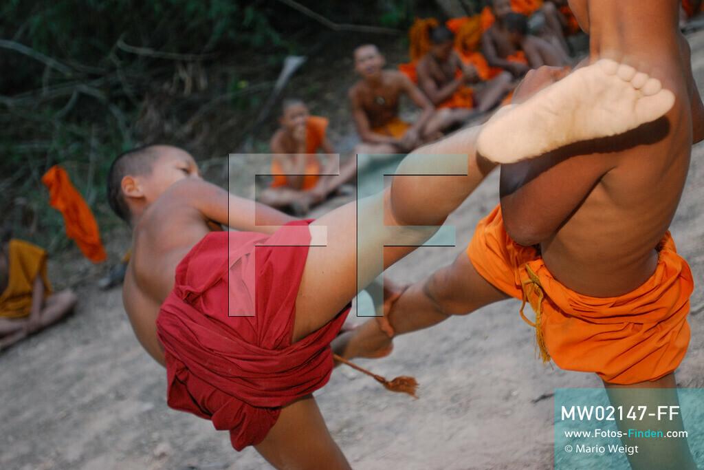 MW02147-FF | Thailand | Goldenes Dreieck | Reportage: Buddhas Ranch im Dschungel | Die jungen Mönche lernen Muay Thai (Thaiboxen).  ** Feindaten bitte anfragen bei Mario Weigt Photography, info@asia-stories.com **