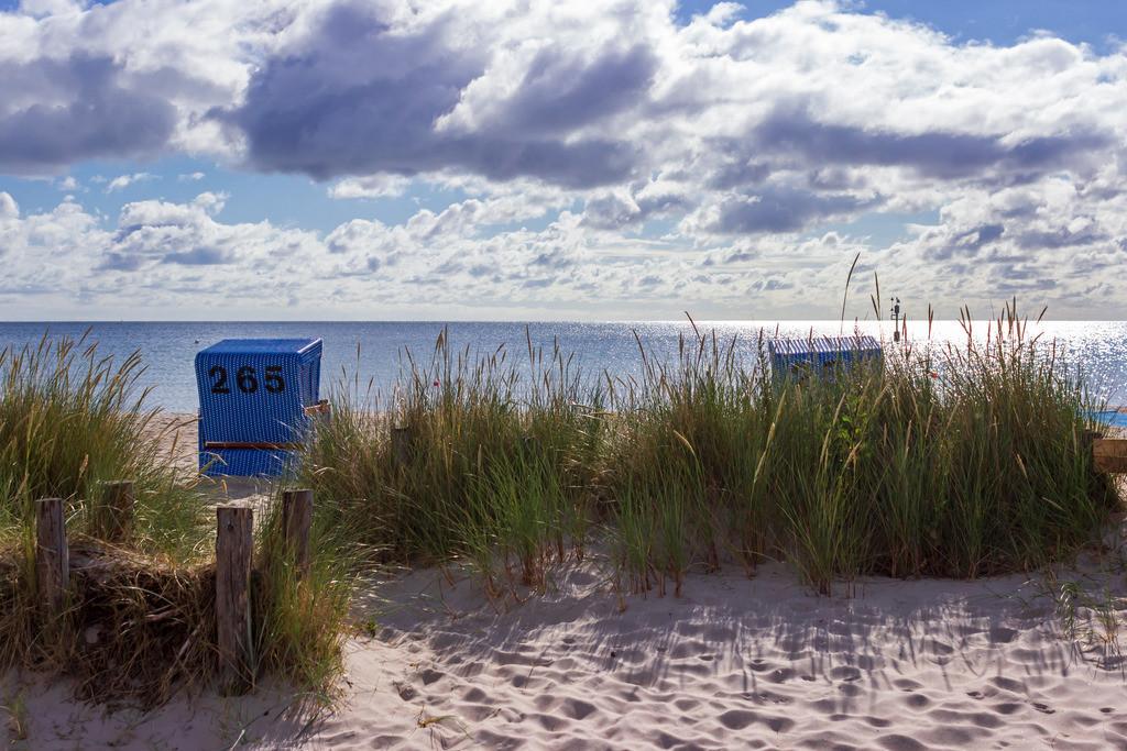 Strandkörbe an der Ostsee | Strand in Damp