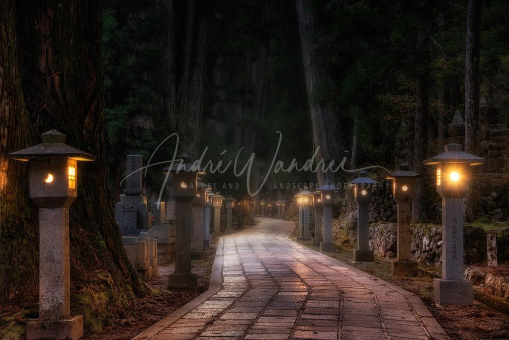Nachtwanderung auf dem Okunoin Friedhof