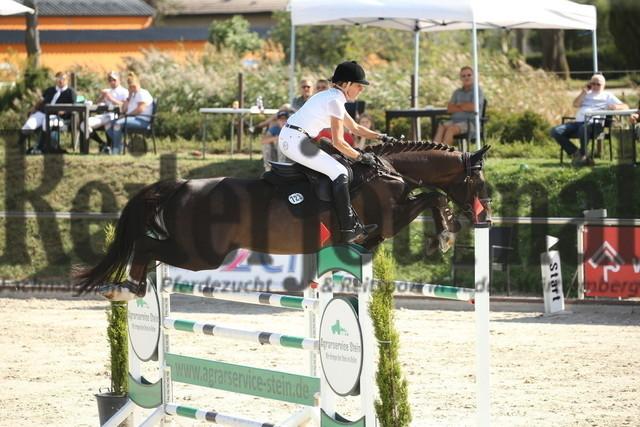 Durmersheim_2020_Amazonen-Springprfg_Kl.S_Barbara Steurer-Collee_Salt_N Pepper (19)