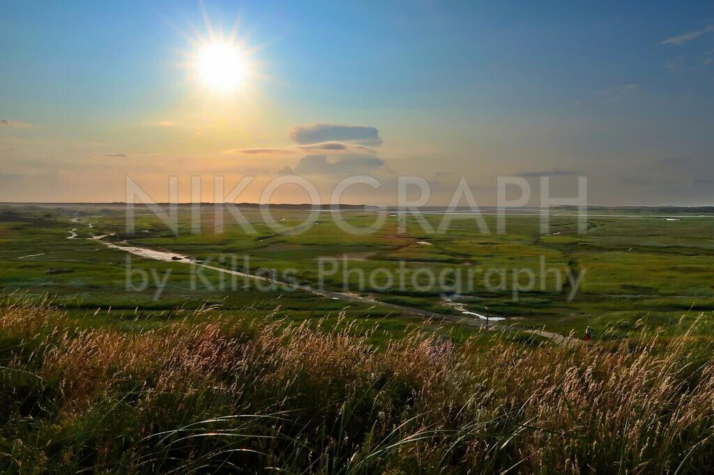 Texeler Aussicht   Die Aussicht über das Naturschutzgebiet