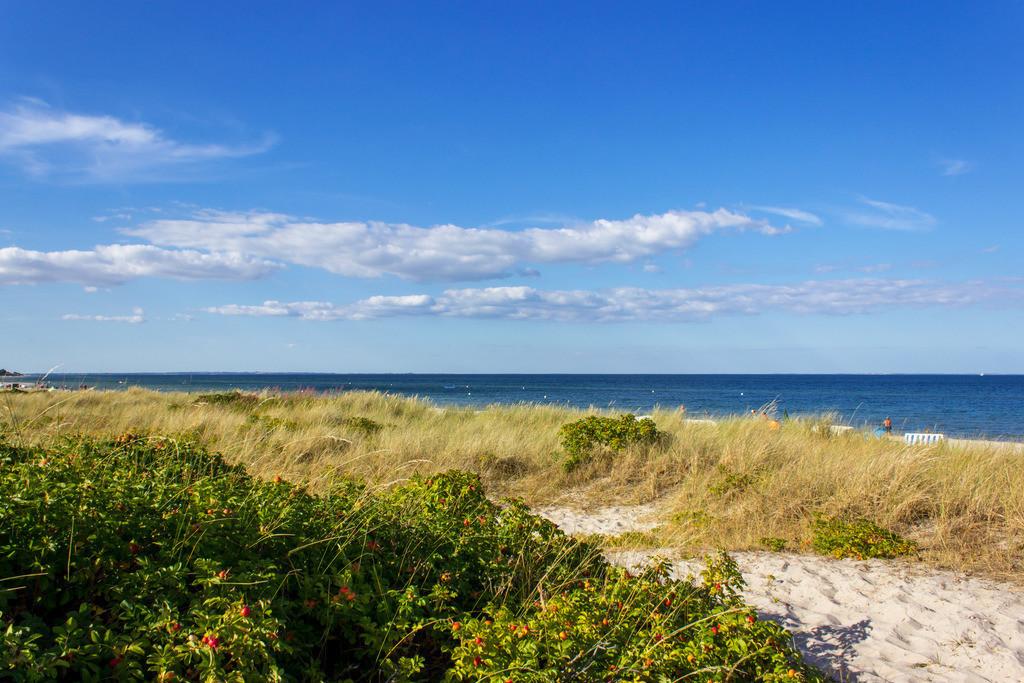 Strand in Kronsgaard   Strand in Kronsgaard im Sommer