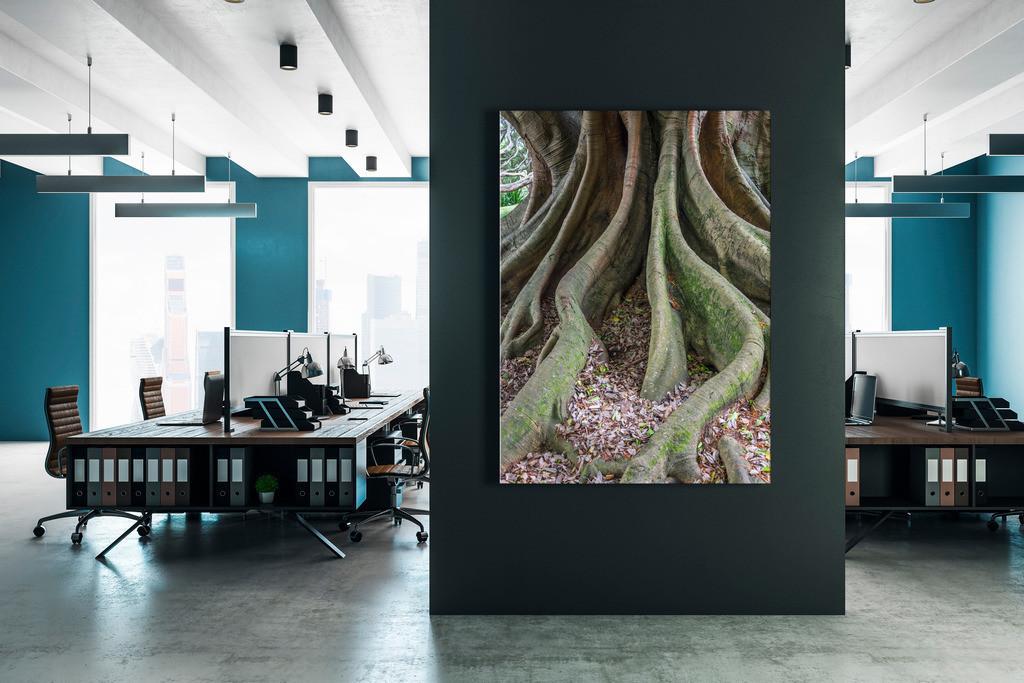Motiv Baumwurzeln für ein Großraumbüro | Anwendungsbeispiel für eine Wanddekoration in einem Großraumbüro oder einem Coworking Space. Sie finden das Motiv in der Galerie Nimm drei - Bäume und Grün