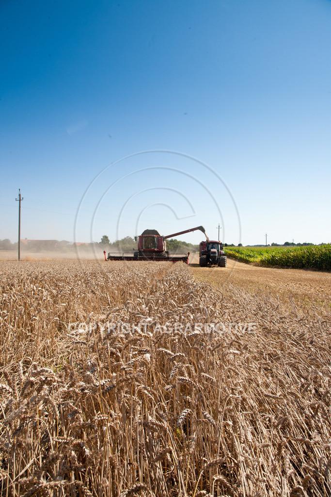 20110804_0336 | Mähdrescher bei der Weizenernte