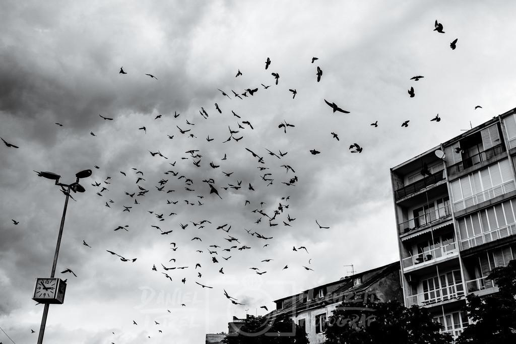 DanielTetzelFotografie-Shop-21