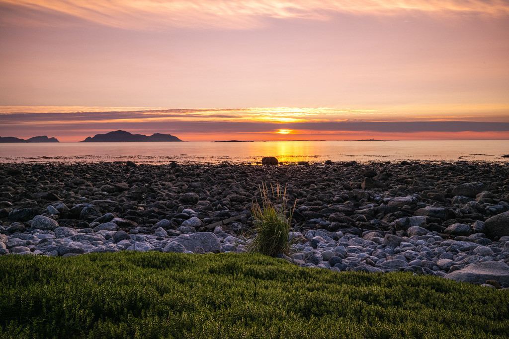 Nordic beach   Stones and some grass – there is not much more on this Norwegian beach