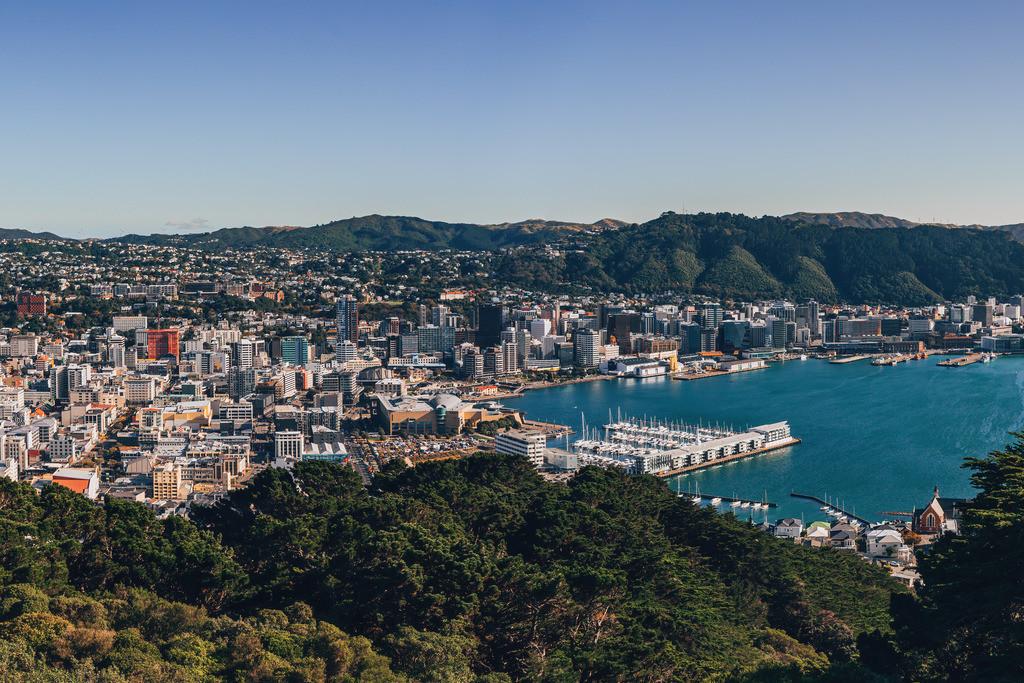 Blick auf Wellington | Blick auf Wellington vom Mount Victoria