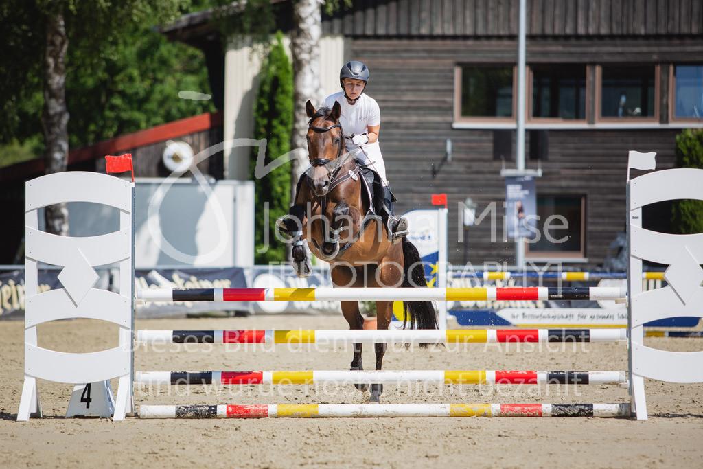 200819_Delbrück_Sprpf-A_2_1-263 | Delbrück Masters 2020 Springpferdeprüfung Kl. A** 4-6jährige Pferde