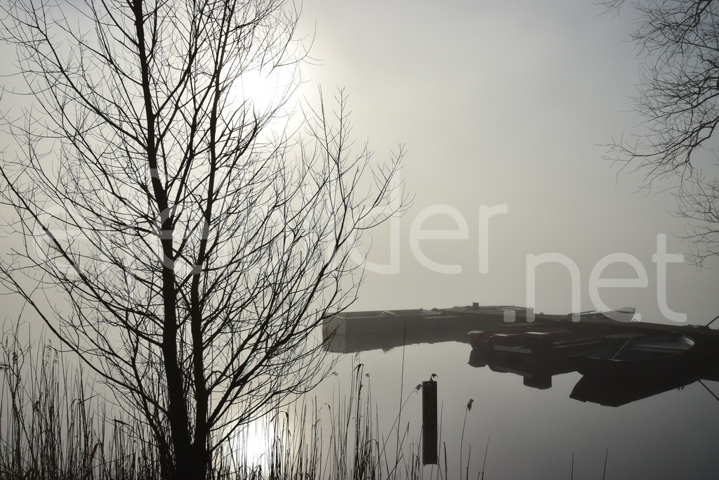 Morgenstimmung am Meerfelder Maar | Morgenstimmung am Meerfelder Maar