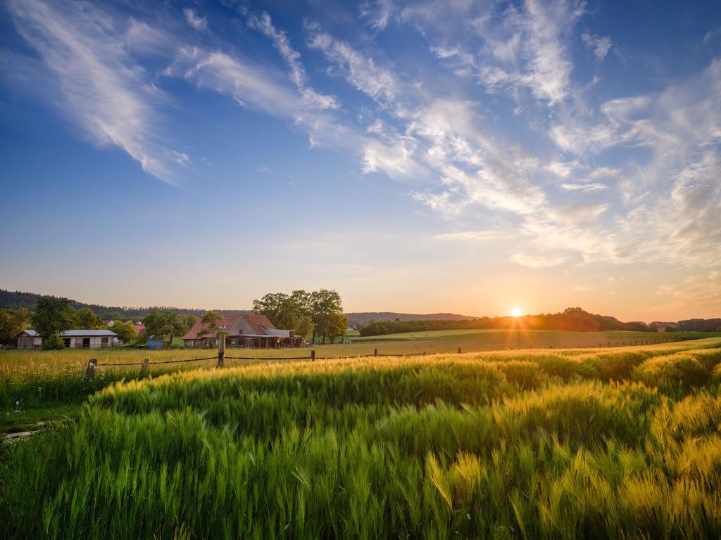 Sonnenuntergang bei Kirchdornberg | Sonnenuntergang im Juni bei Kirchdornberg (Bielefeld).