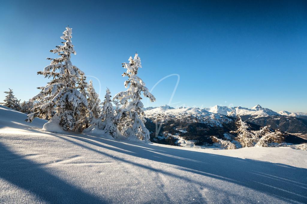 Schnee   Traumhafter Tiroler Winter