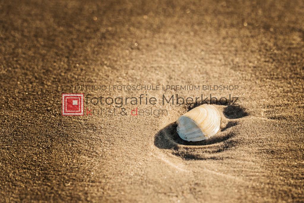 _Marko_Berkholz_mberkholz_usedom_MBE9480 | Die Bildergalerie Düne, Strand & Meer des Warnemünder Fotografen Marko Berkholz, zeigt Impressionen der abwechslungsreichen Dünenlandschaft an der Ostsee.