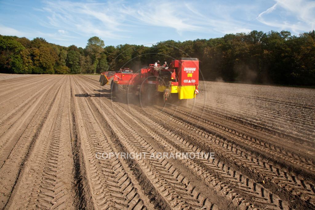 20110929-IMG_5919 | Ernte auf einem Kartoffelfeld - AGRARBILDER