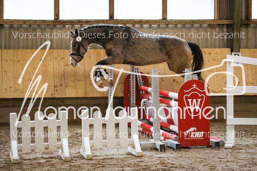Freispringen-Pony-3j-25
