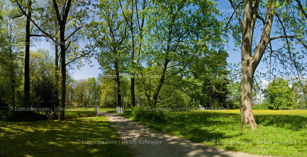 10049-10010 - Schlosspark Ballenstedt