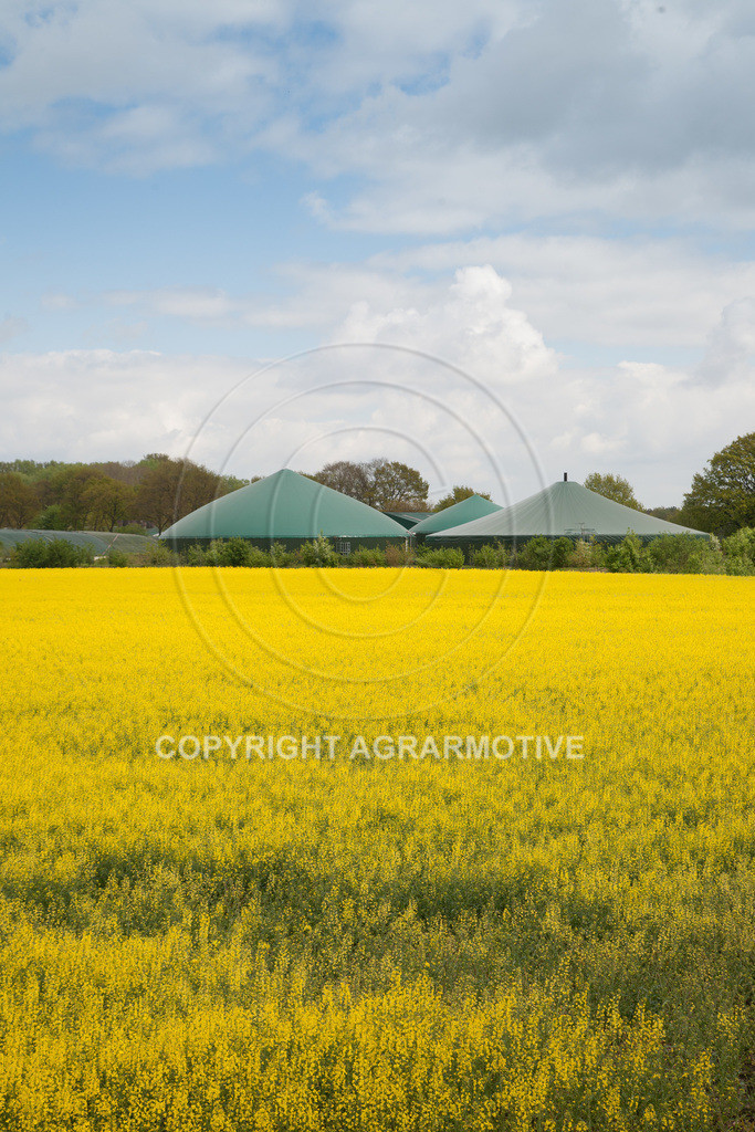 20100505-IMG_6184 | erneuerbare Energie Biogas - AGRARMOTIVE