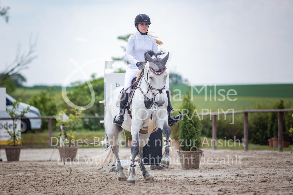 190524_LüPfSpTa_M-Spr_U25-352 | Pferdesporttage Herford 2019 Springprüfung Kl. M* U25