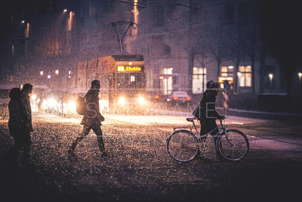 Winter Schnee Leipzig  (8)