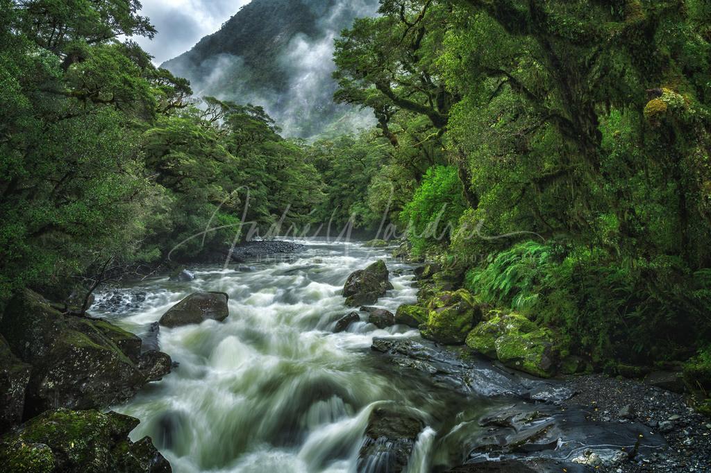 Der Fluss ins Grüne