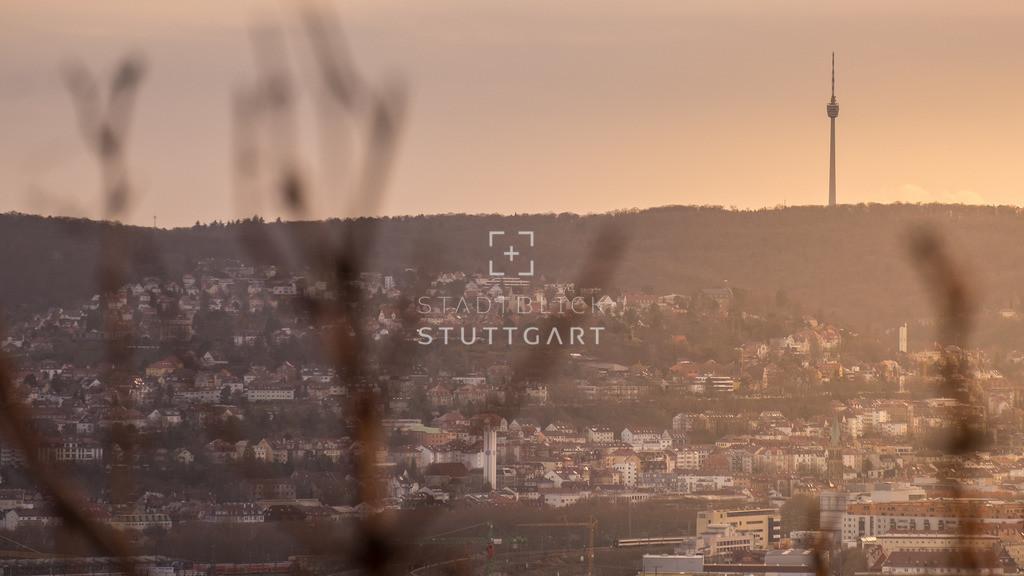Blick vom Burgholzhof