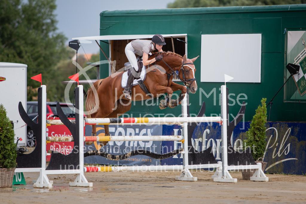 190801_BST_Springpferde-M_5-7J-405 | Braker Sommerturnier 2019 Springpferdeprüfung Kl. M* 5-7jährige Pferde