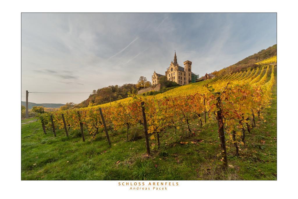 Schloss Arenfels | Die Serie 'Leuchtender Rhein' zeigt den Rhein in leuchtenden Farben.