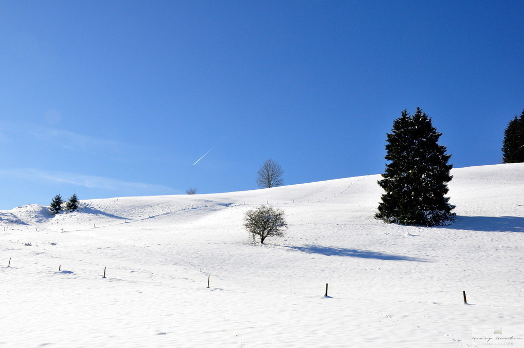 Winterzauber 3