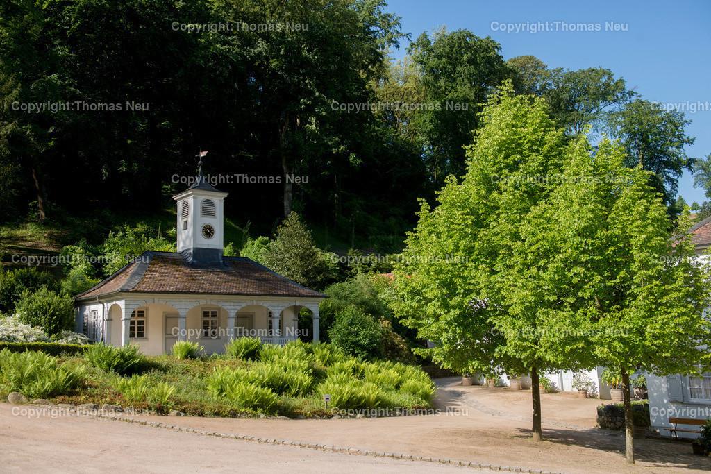 _DSC5581 Kopie | bensheim,Stadtteil Auerbach,hessischer Staatspark Fuerstenlager, Bild: Thomas Neu