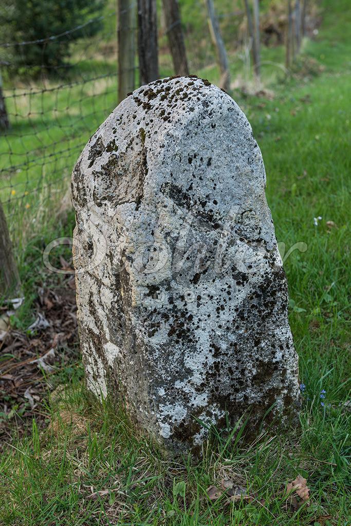 Alter Grenzstein, Ziefen (BL)   Ältester Grenzstein (1531) von Ziefen, es ist ein Kantonsgrenzstein zwischen BL und SO, zugleich ein Vierbanner zwischen den Gemeinden Ziefen (BL), Lupsingen (BL), Büren (SO) und Seewen (SO), Ziefen im Kanton Baselland.