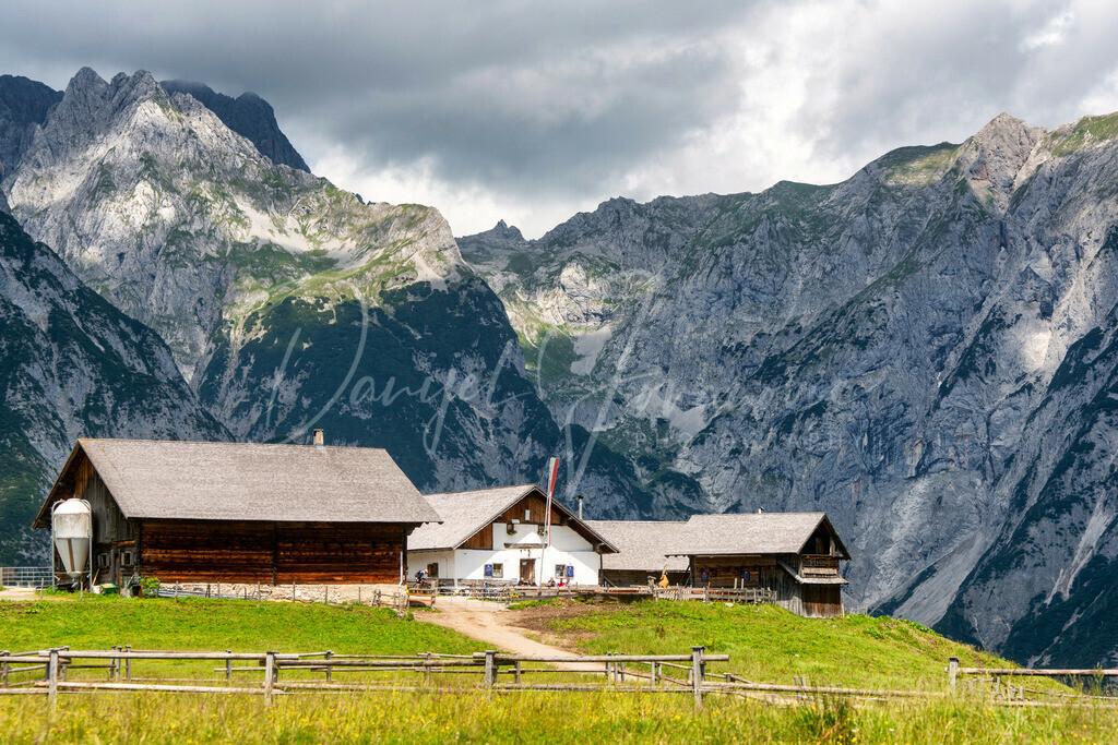 Walderalm | Idylle im Karwendel