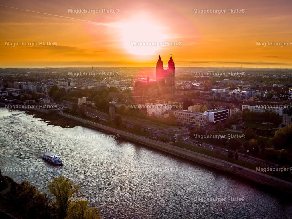 Magdeburg Stadtpark abends-0031
