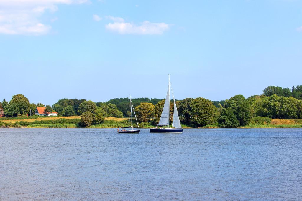 Schleistrand Schneiderhaken  | Segelboote auf der Schlei vor dem Schleistrand Schneiderhaken