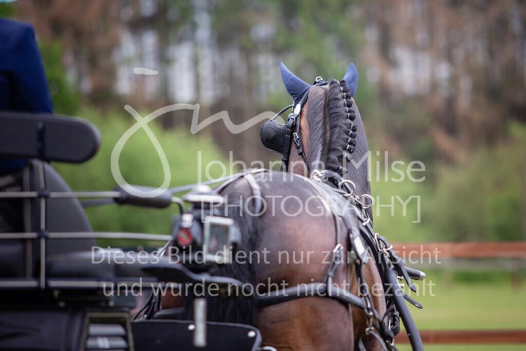 190525_Fahren-019   Pferdesporttage Herford 2019 Fahren