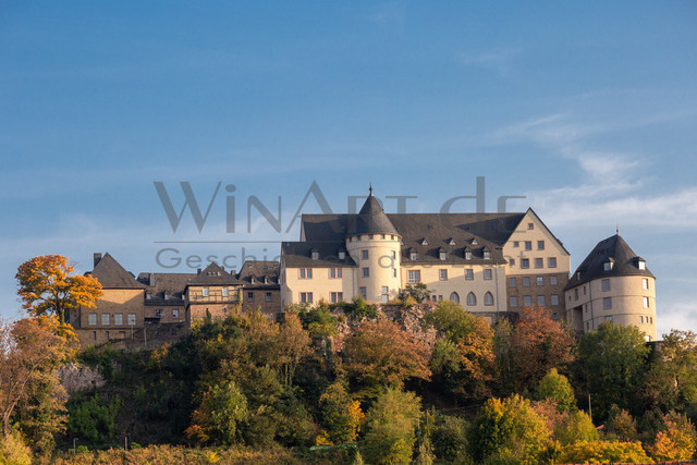The castle Ebernburg in Germany | The castle Ebernburg in Germany under blue skys in summer