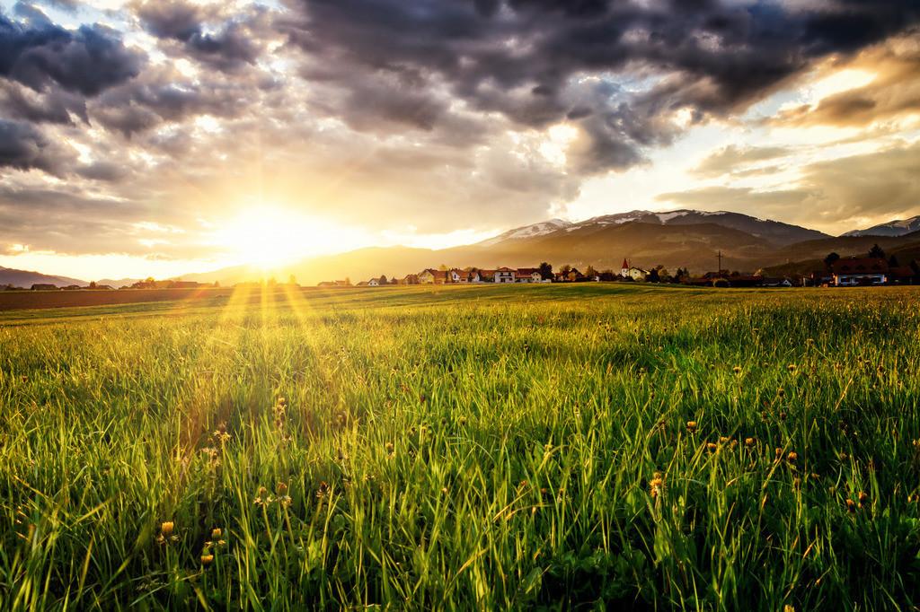 Frühlingslicht | Feistritz bei Knittelfeld