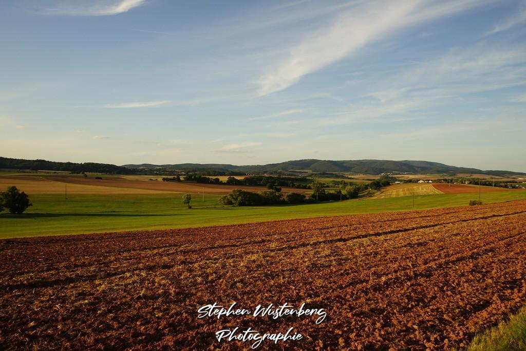 Der Donnersberg in Herbstfarben | Der Donnersberg in Herbstfarben