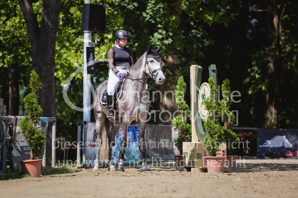 200819_Delbrück_Sprpf-A_2_1-238 | Delbrück Masters 2020 Springpferdeprüfung Kl. A** 4-6jährige Pferde
