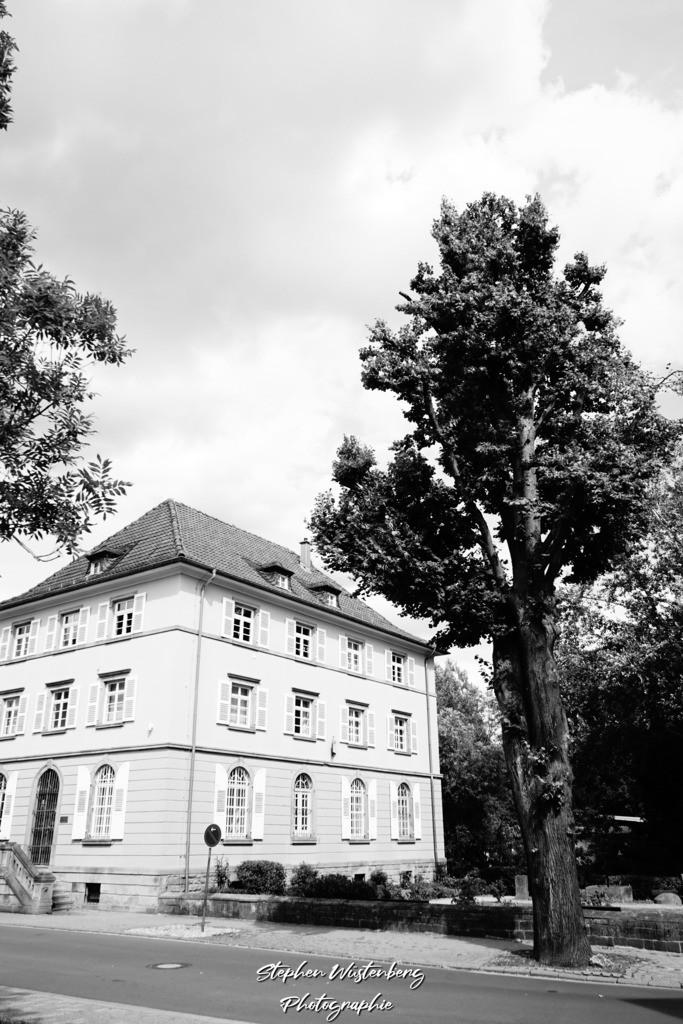 DSC04698 | Rockenhausen