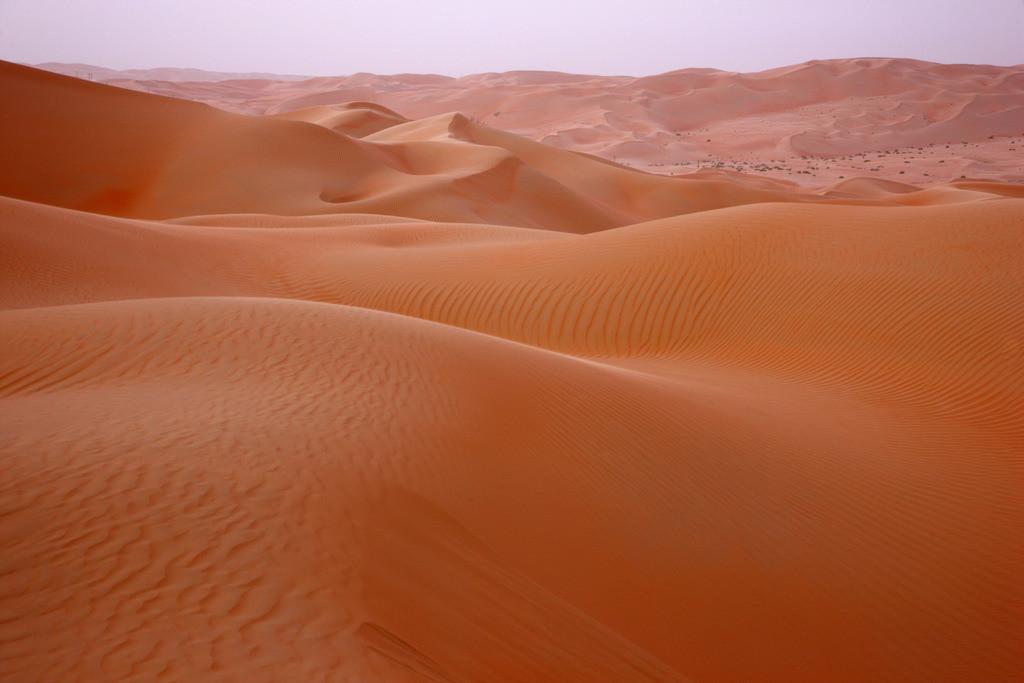 JT-110228-4111 | Roter Sand, Sandduenen, in der Empty Quarter genannten Wueste Rub'al-Khali, Emirate.