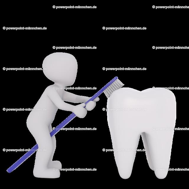 the dentist explains how to clean the teeth in the right way   Quelle: https://3dman.eu   Jetzt 250 Bilder kostenlos sichern