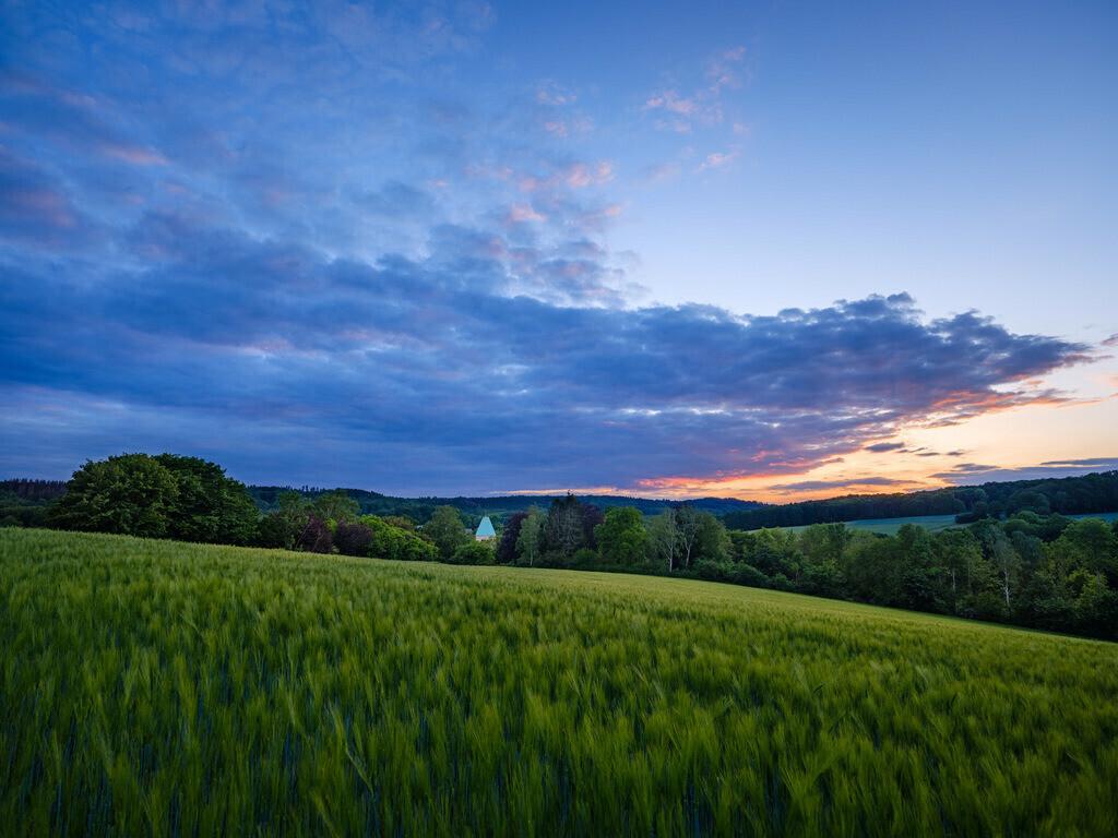 Frühlingsabend in Kirchdornberg   Frühlingsabend in den Feldern bei Kirchdornberg.