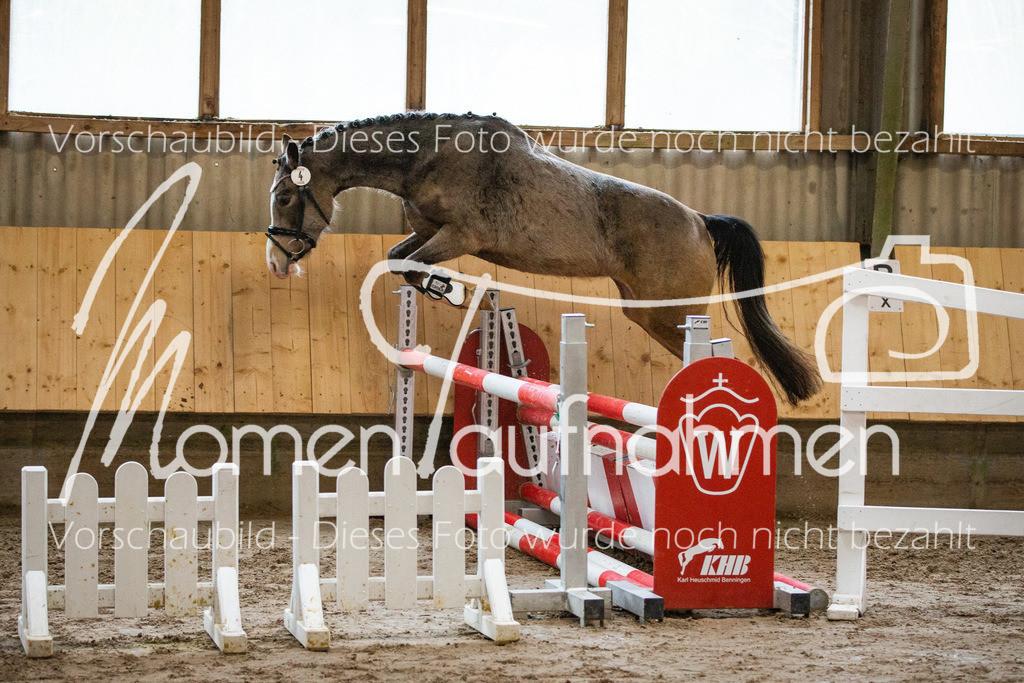 Freispringen-Pony-3j-27