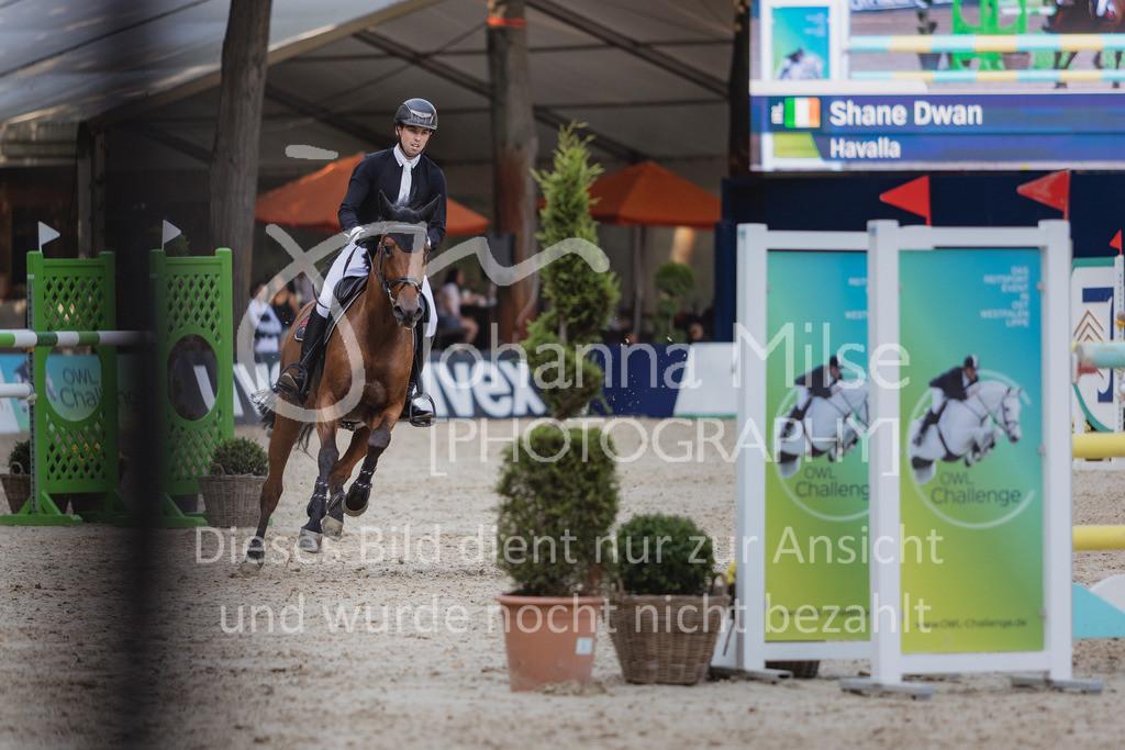 210912_OWLCh_YoungsterTrophy_7j-444 | FUNDIS Youngster Tour (CSIYH1*) 1. Qualifikation für 7jährige Pferde international 1,35m