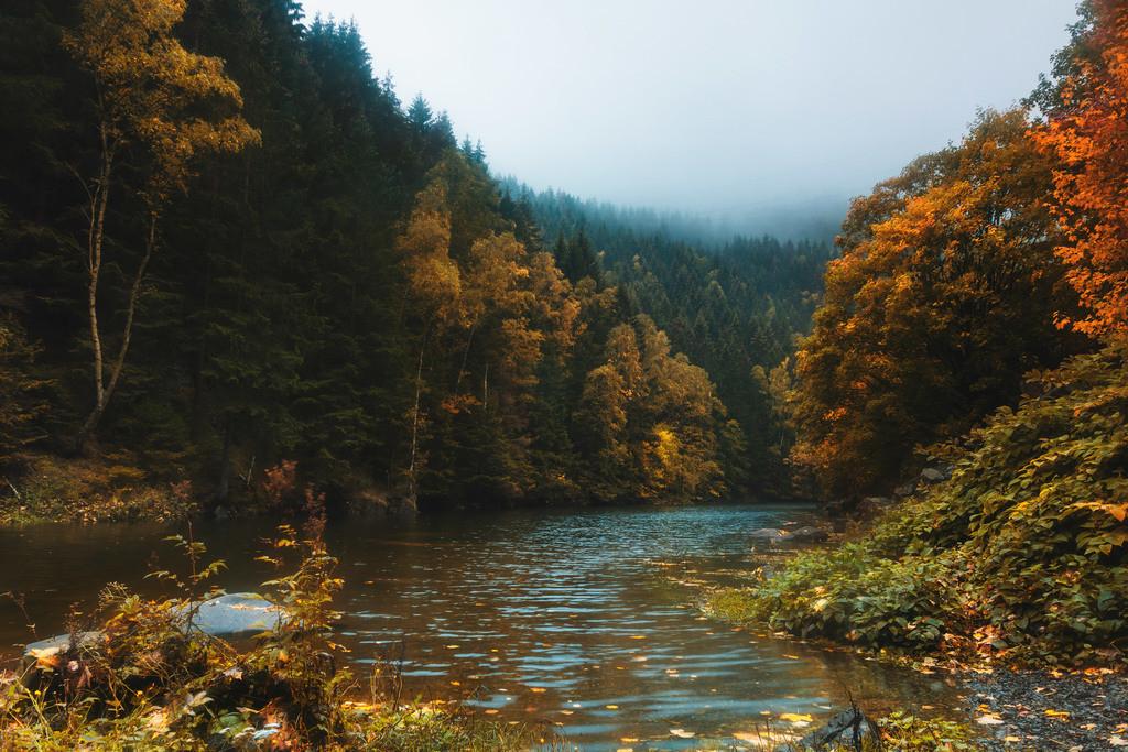Herbst im Harz | Herbststimmung am Okerstau im Harz.